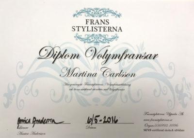 martina-diplom2